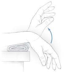 Wrist extension and flexion